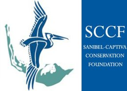 things-to-do-sanibel-island-inn-SCCF
